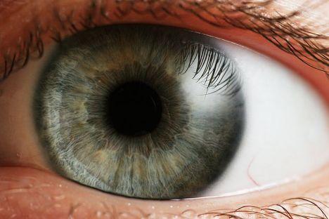 A Eye_iris