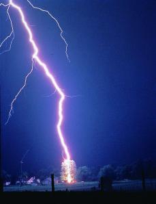 Lightning_hits_tree