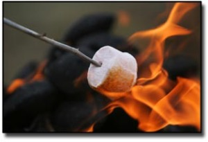 marshmallow melting in a camp fire